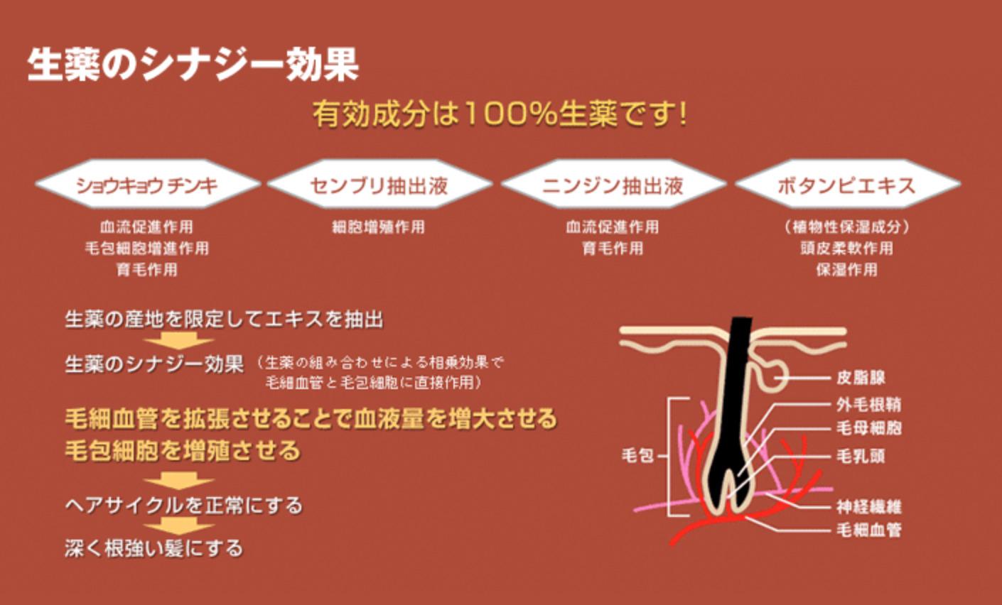 モウガ 生薬のシナジー効果
